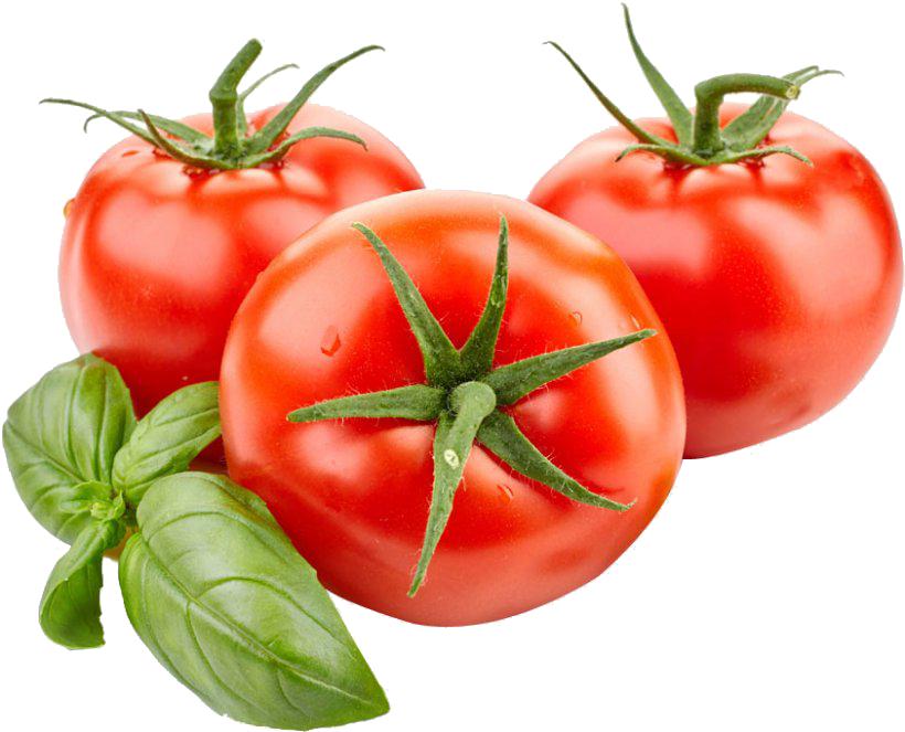 sauces-tomato